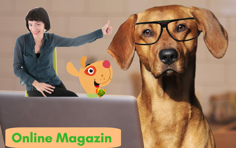 Online Magazin Kerstin Frei Bello Bella Hundeliebe