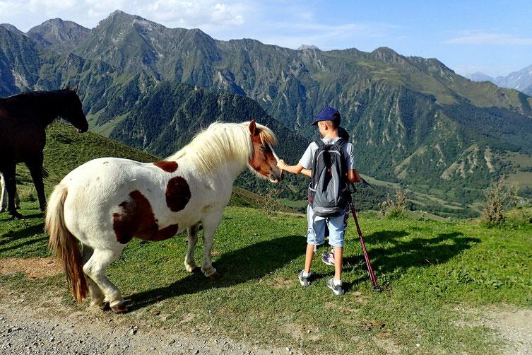 Double ration de calins pour ce poney!