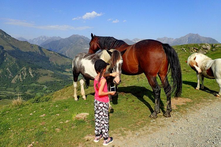 Voilà des chevaux, séquence calins...