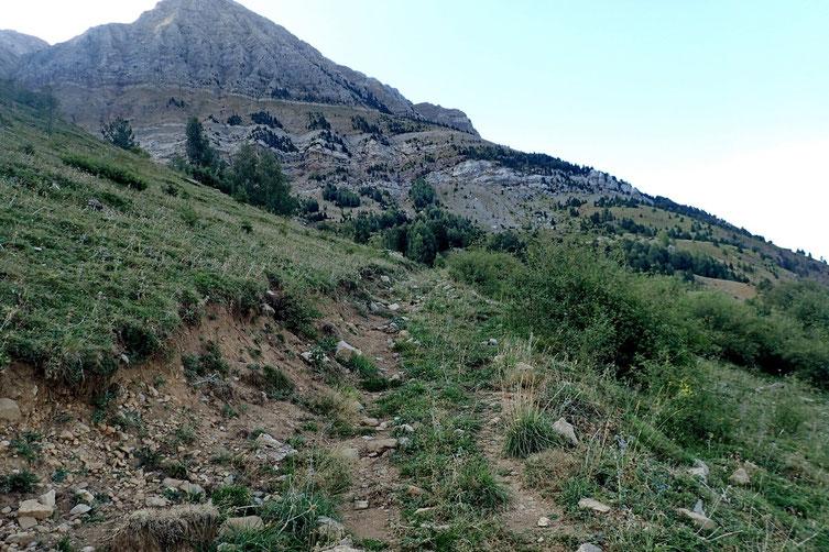 Vers 1750m je quitte la piste pour prendre un petit sentier qui contourne le massif par l'Ouest.