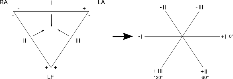 EKG triaxiales hexaaxiales System Einthoven Dreieck