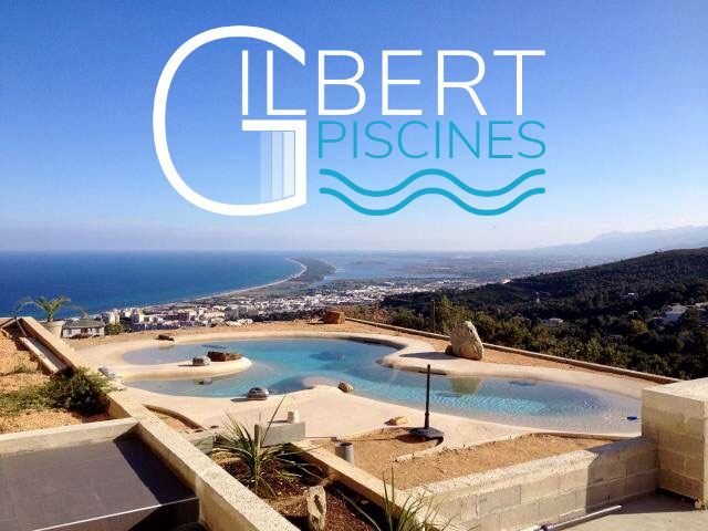 Installations constructions gilbert piscines sas for Piscine haricot prix
