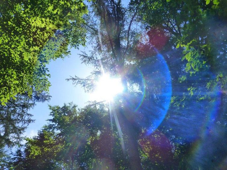 Ufo, Quelle: www.lichtwesenfotografie.com