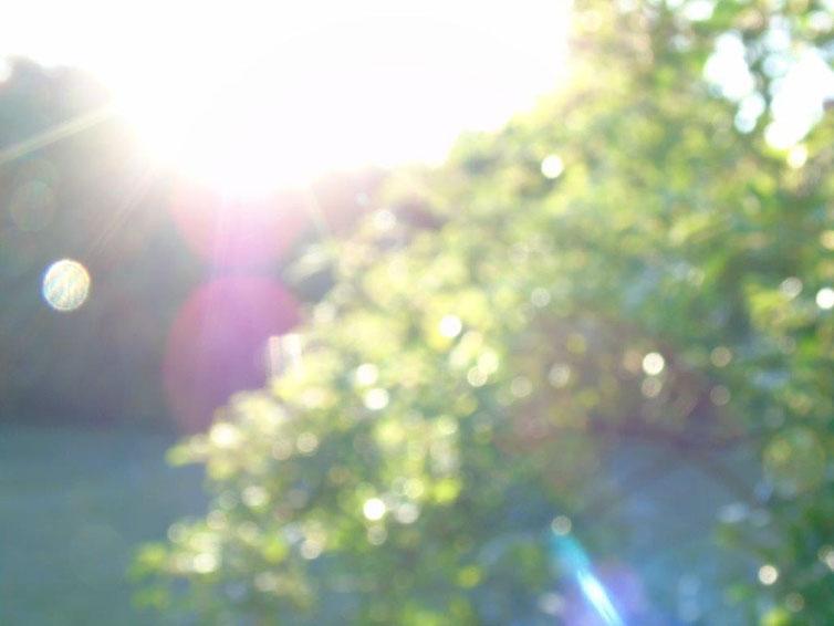 Ich bin rein und ich bin klar, Quelle; www.lichtwesenfotografie.com