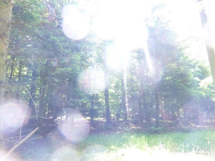 Weiße Energiekugeln, Quelle: www.lichtwesenfotografie.com