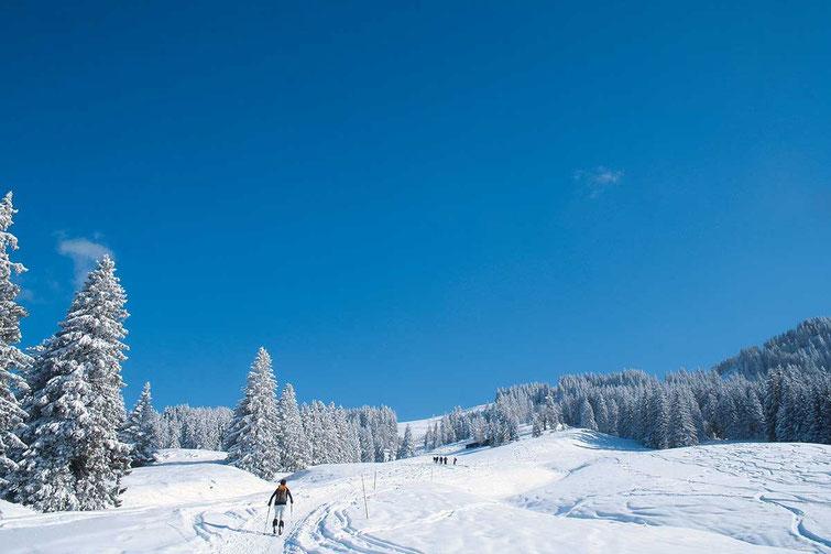 Bild: Aufstieg zum Grünten in den Allgäuer Alpen