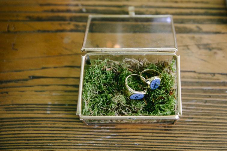 Siegel- bzw. Eheringe auf Moos - Foto: Hanna Witte Hochzeitsreportagen