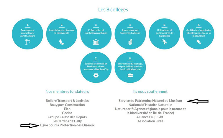 Capture d'écran du site du CIBI : http://cibi-biodivercity.com/le-cibi/