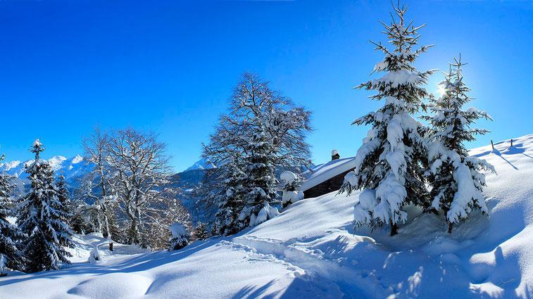 En montant au Mont Lachat, massif des Bornes, Haute-Savoie