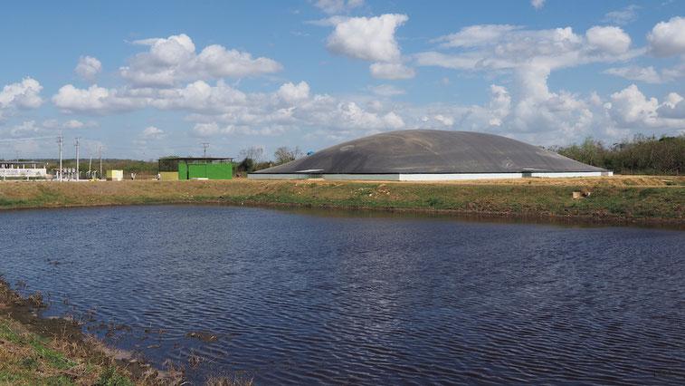 Biodigestor aprovechamiento de residuos de matadero - aguas residuales  y purin de cerdo