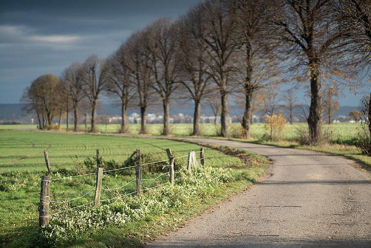 Im Test: Landschaftsfoto mit SONY Alpha 7s2 und LEICA Elmarit-M 2,8/90 mm sowie NOVOFLEX NEX/LEM-Adapter. Foto: Klaus Schoerner