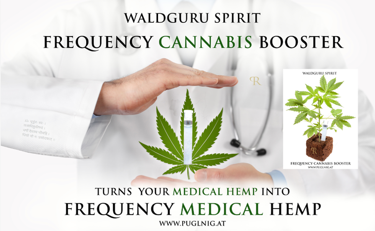 Frequenz Cannabis & Veggy Booster Technologie, Waldguru´s Frequenz Booster, Frequency cannabis & veggy booster, www.waldguru-cbd.at