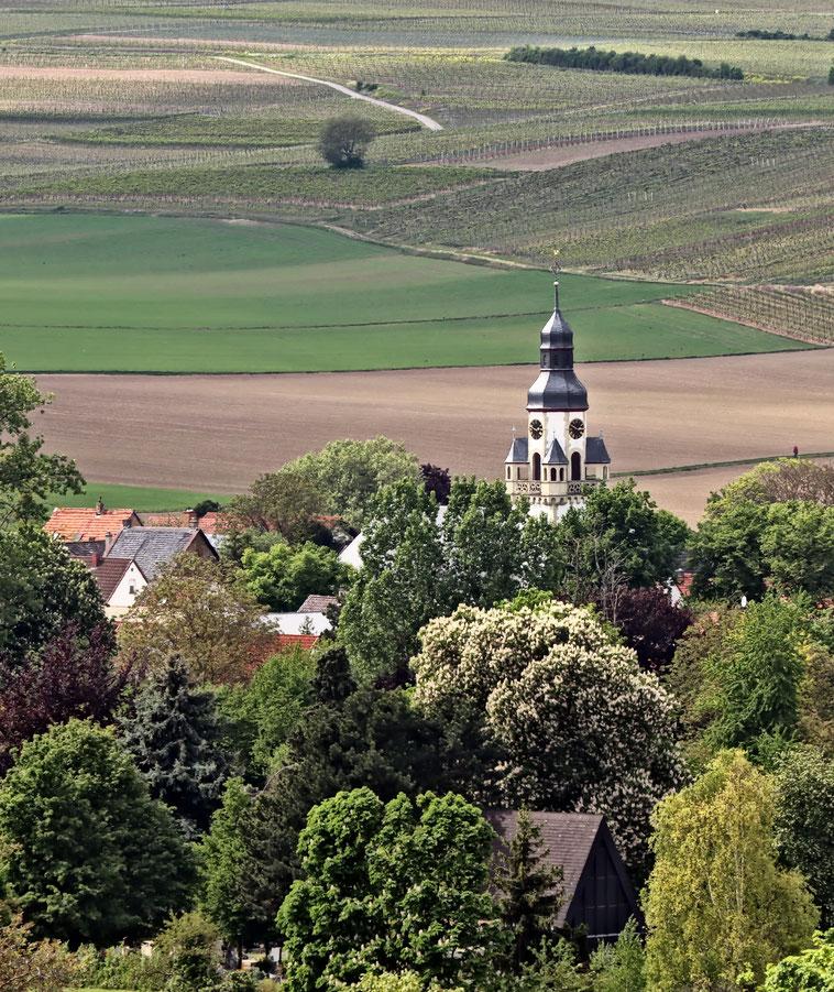 Saulheim Rheinhessen