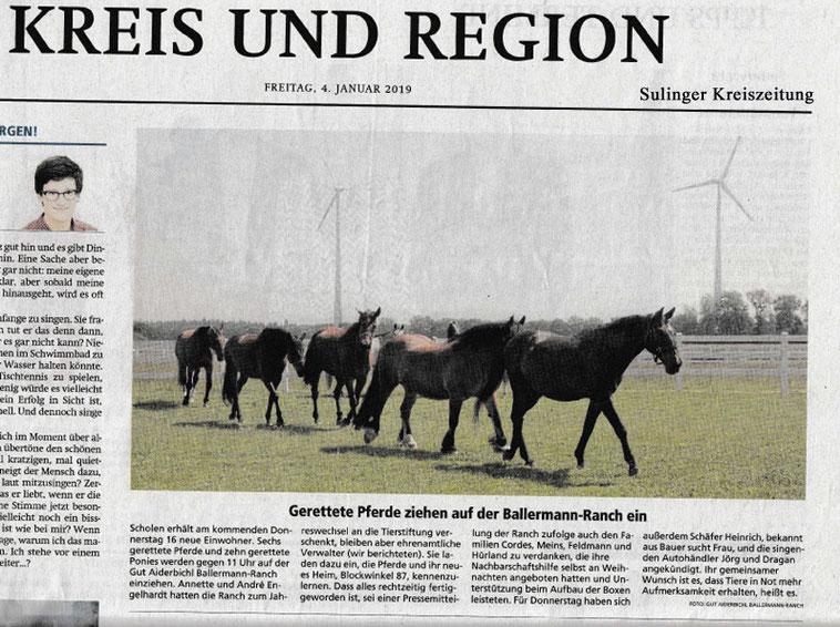 Sulinger Kreiszeitung - DIE PFERDE KOMMEN!