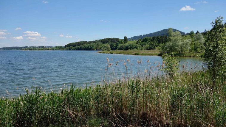 Rottachsee Rundweg