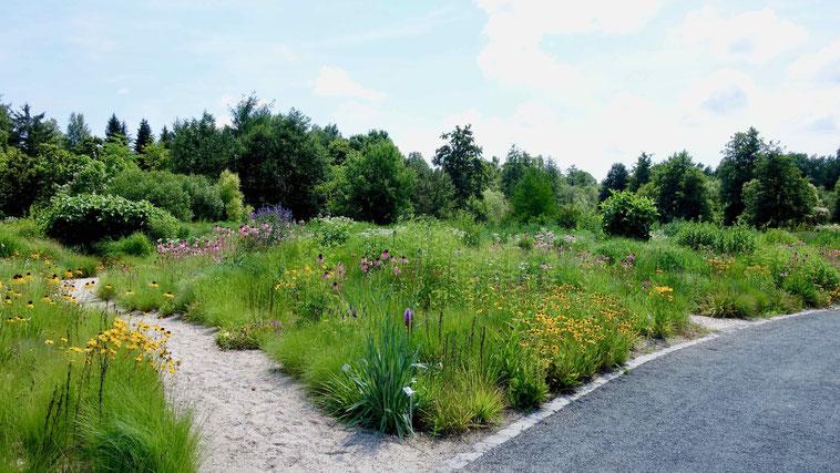 Highlight Botanischer Garten