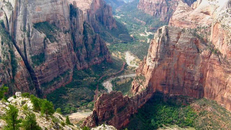 Zion Nationalpark, Observation Point