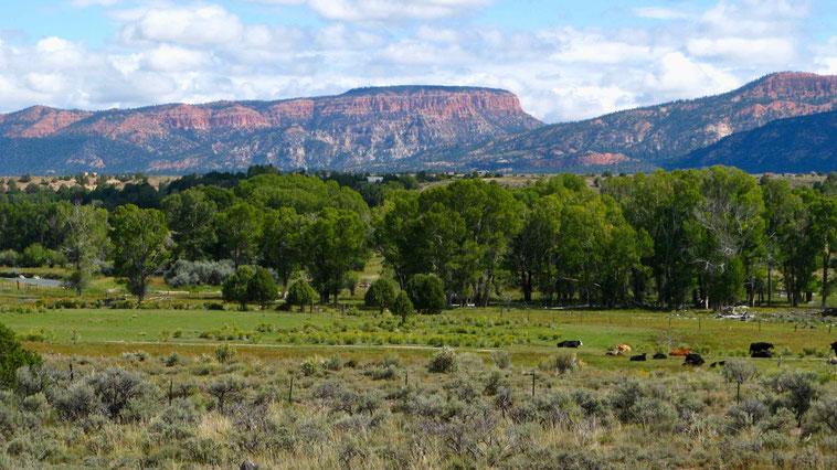 Reisebericht und Reisetipps USA: Auf dem Weg zum Red Canyon