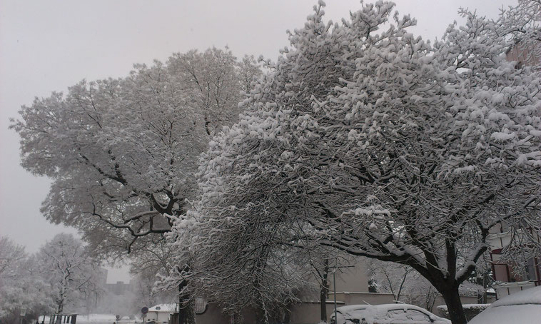 Winterliches Großstadtflair