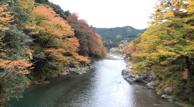 La rivière Tama vue de la passerelle.