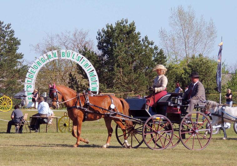 """Die ersten Pferdeliebhaber zogen schon am Freitag ihre """"Kreise"""" in Bülstringen."""