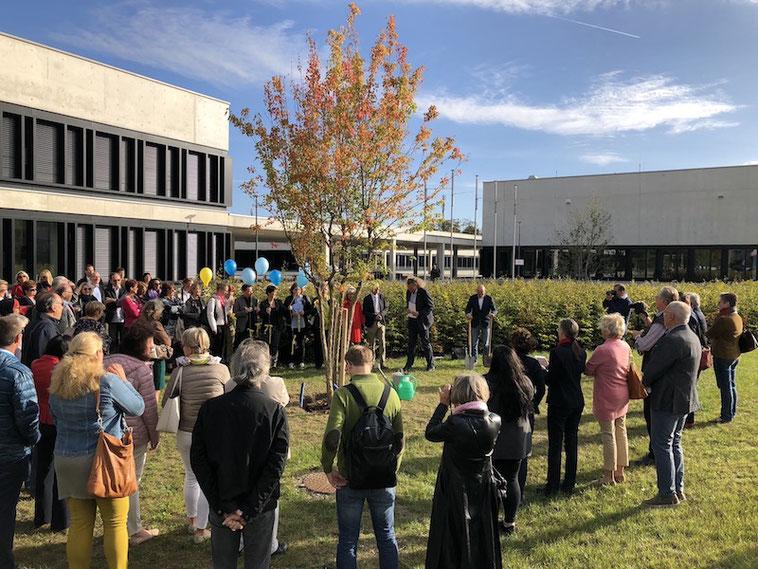 An der PH Niederösterreich wird Michael Schratz' Baum der Lernseitigkeit feierlich gepflanzt