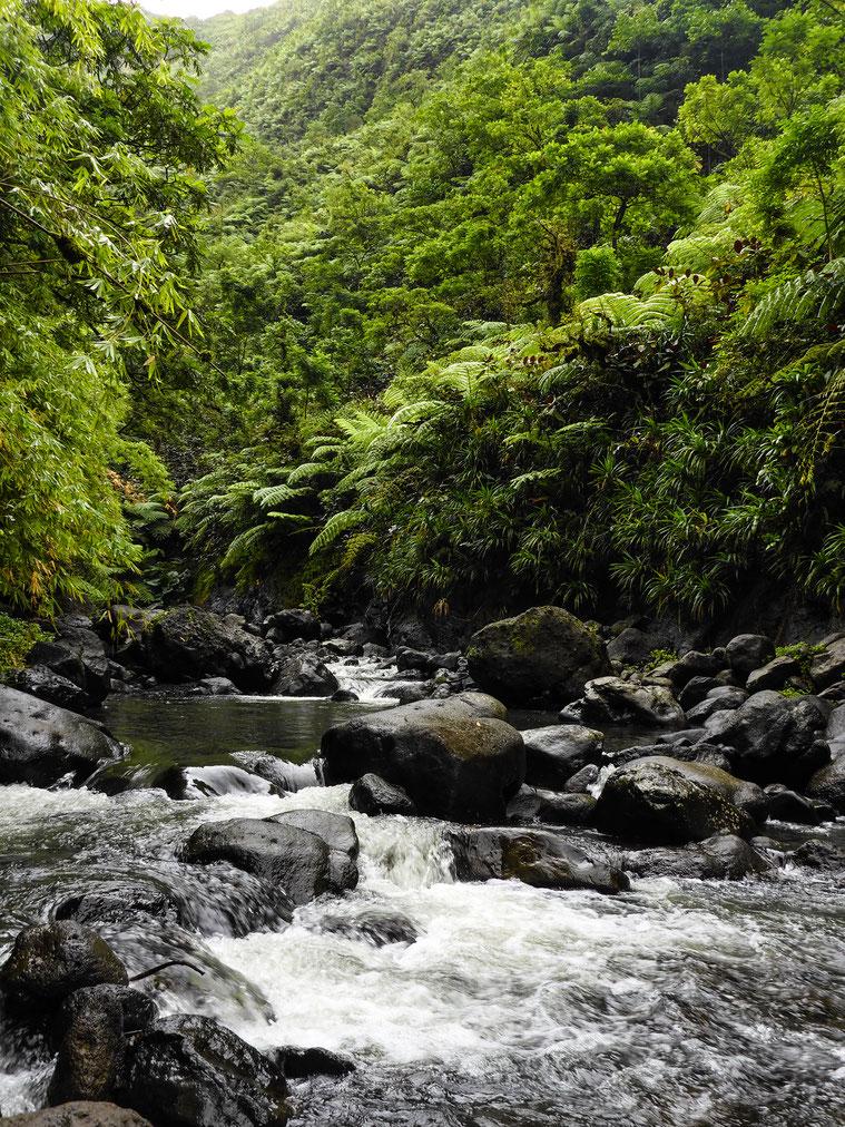 faire de la randonnee à Tahiti