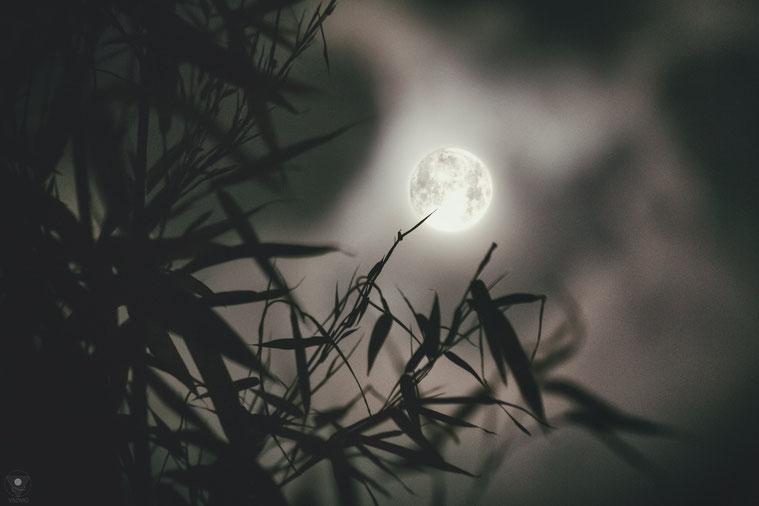 mondnacht | visovio 092016  • www.visovio.de • | nacht vor der vollmond ecplipse
