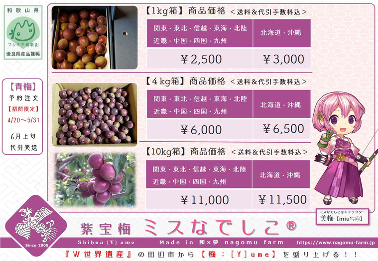 紫宝梅『ミスなでしこⓇ』販売POP【2018】 和×夢 nagomu farm