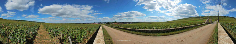 Grande Rue et Romanee-Conti-vendange 2012