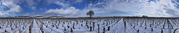 Beaune Les Tuvilains hivers