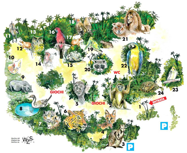 Piantina dello Zoo di Magliaso