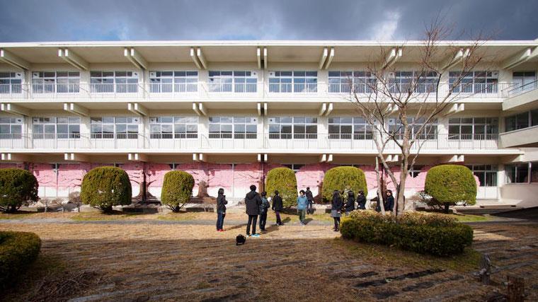北校舎に1階の外壁に描かれた桜並木のオクリエ。力強く、そこに花を咲かせていた。