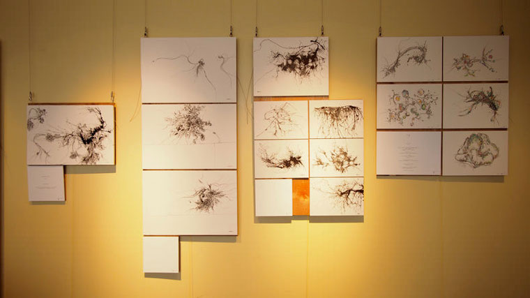 壁に展示された作品の数々。右にある5つの作品が、震災直後に描かれた「awa」。
