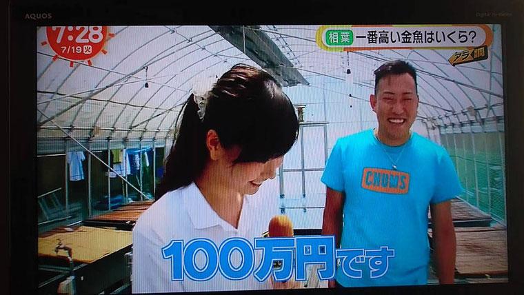平成28年7月19日、めざましテレビ・ココ調