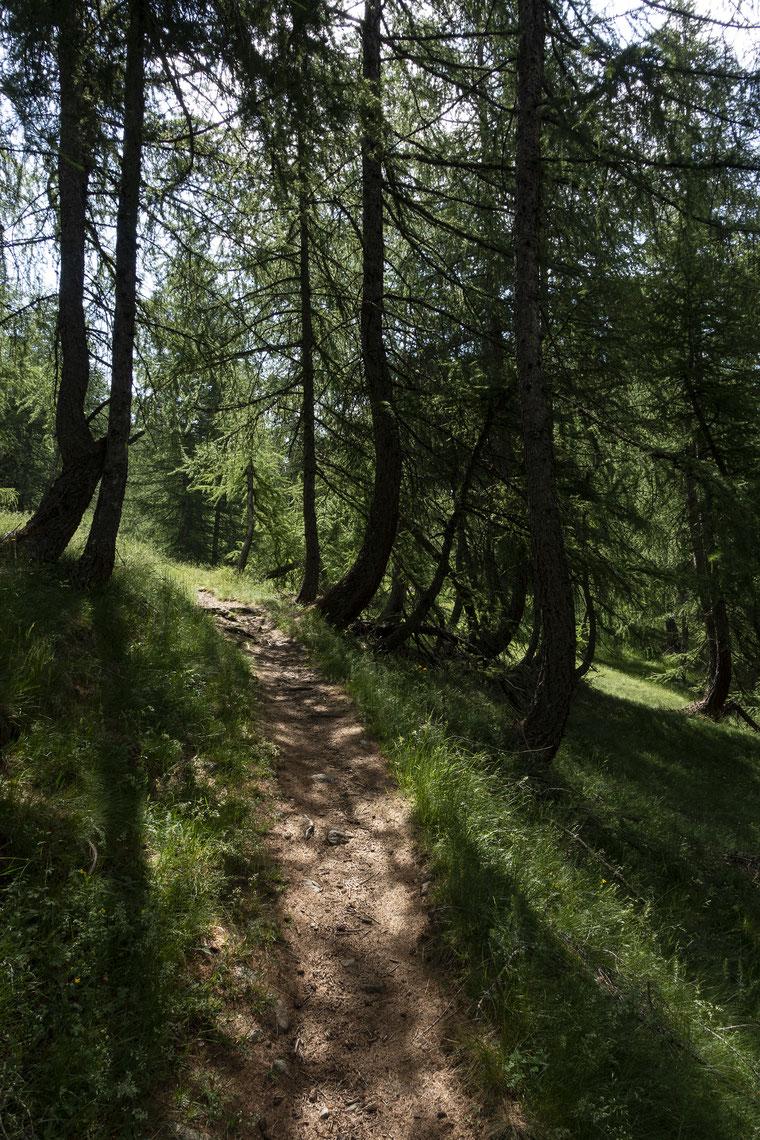randonnée lac de Vens Mercantour