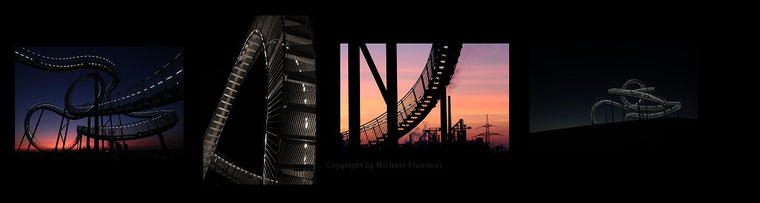 Tiger and Turtle - Copyright by M. Flammer