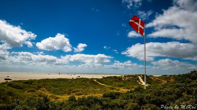 Fanö, Fano, Drachenfest, Dünen, Haus, Ferienhaus, Dänemark, Strand, Meer, Insel,