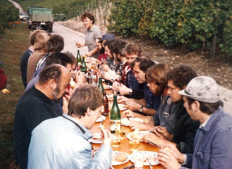 Weinlese 1980