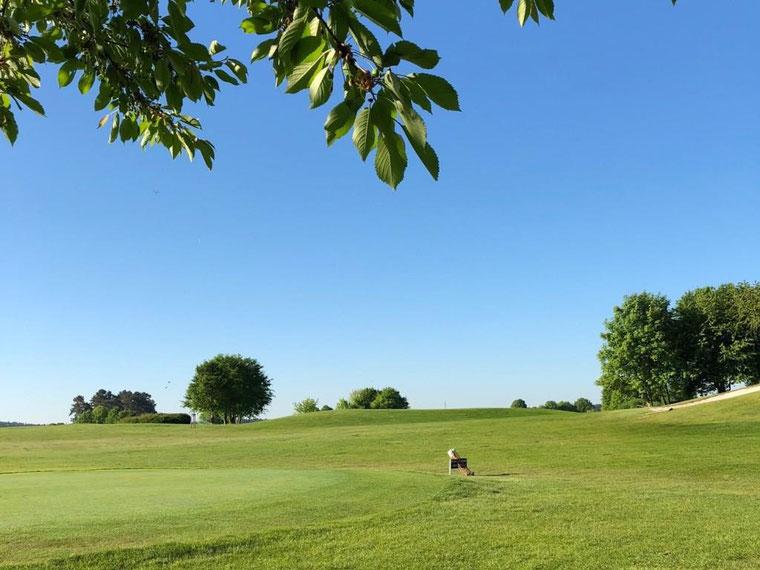 Golfresort Golfplatz Golfanlage Berlin Brandenburg Prenden
