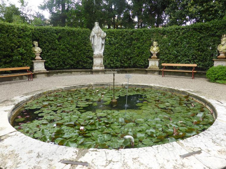 Hortum Simplicium Padova 4