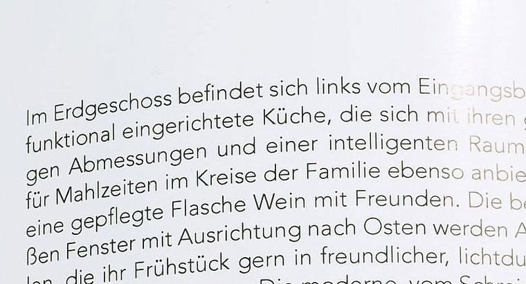 Im Test: 100%-Ausschnitt aus der Reproaufnahme mit SONY Alpha 7s2 mit LEICA Summicron-M 2,0/50 mm. Foto: Klaus Schoerner