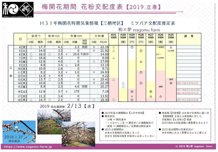 梅開花期花粉交配度推定表【2019立春】 和×夢 nagomu farm