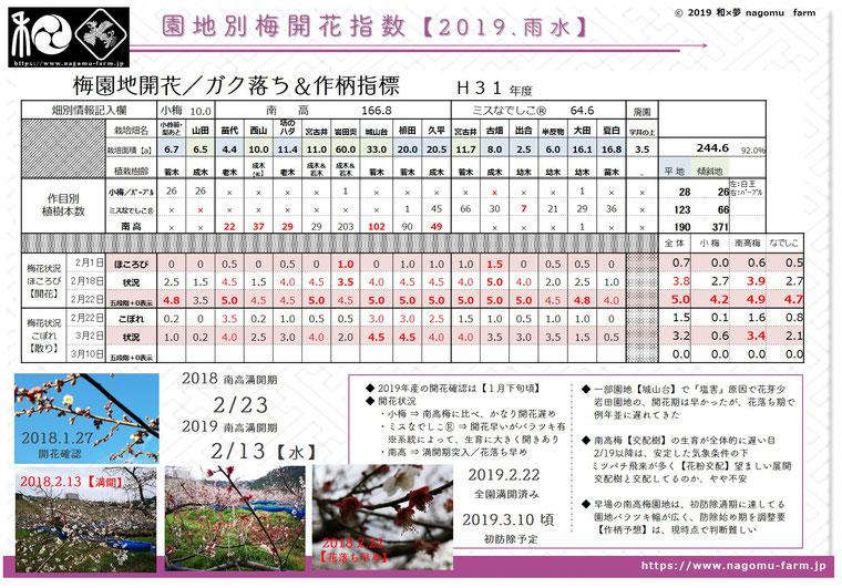 園地別梅開花指数【2019雨水】 和×夢 nagomu farm