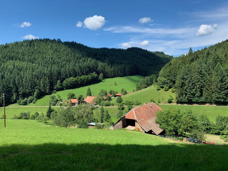 Schwarzwaldliebe bei dem idyllischen Blick auf den Durenbach