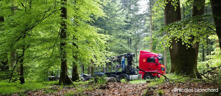 Camion d'extraction de bois, route Aubert, Forêt d'Ecouves, mai 2016.