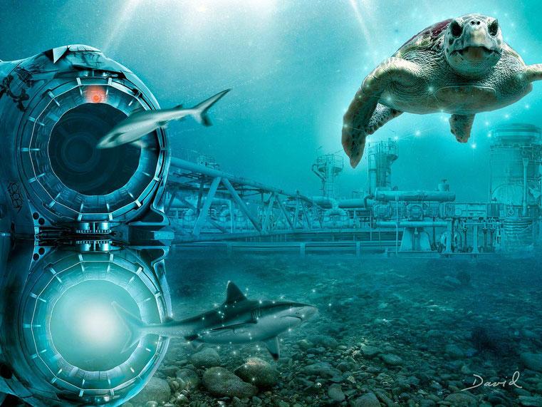 Composing: Das Geheimnis des Meeresleuchtens