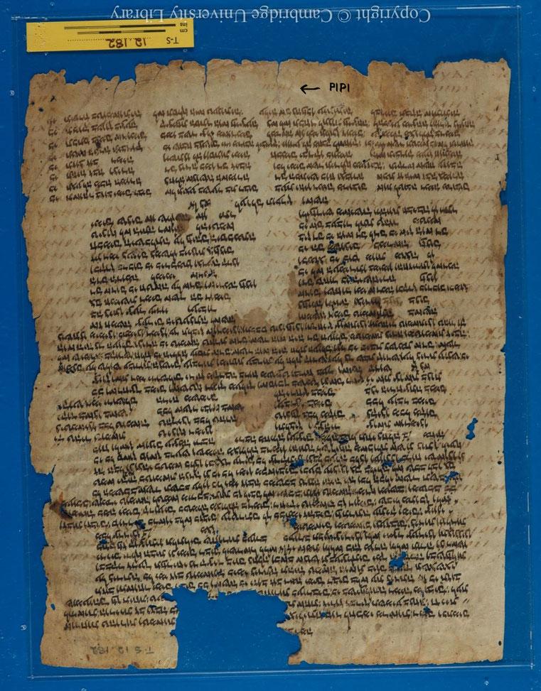 Tétragramme YHWH du Nom divin - PIPI en caractères grecs - Palimpsest; piyyut; Bible (T-S 12.182) - From Cairo Genizah -Cambridge University Library