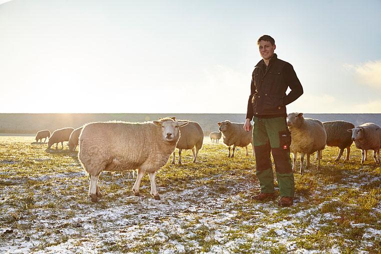 Schäfer Sönke Meesenburg mit seinen Schafen an einem sonnigen Wintertag