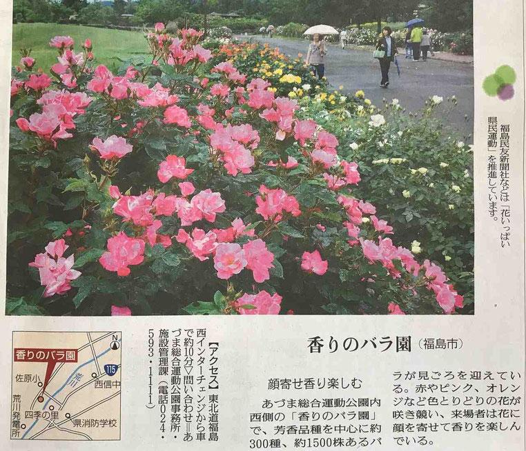 福島市でおすすめのバラ園3選